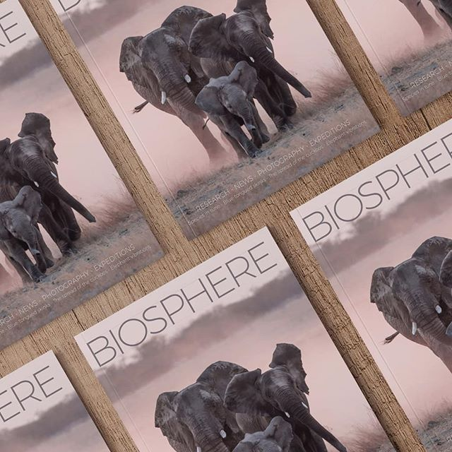 We print BIOSPHERE booklets