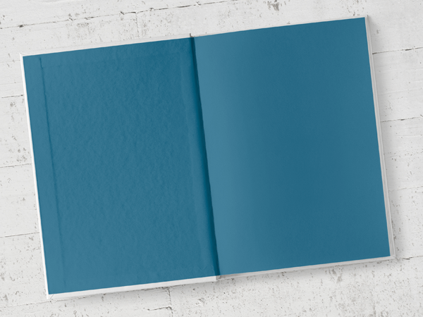 Example of blue (coloured) end papers