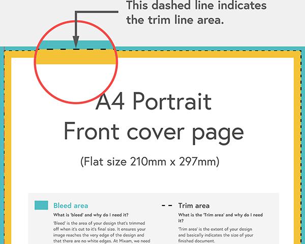 Illustration of trim lines