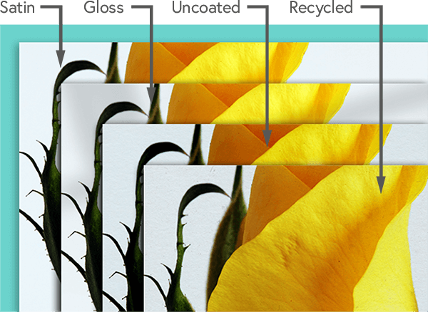 Examples of silk, gloss, uncoated, and recycled paper